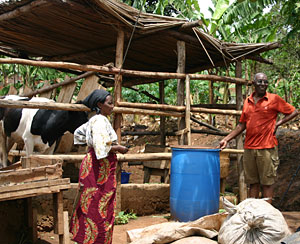 Farmers like Sarah and Christopher Senyumba-Zake can now raise livestock in Kampala, Uganda