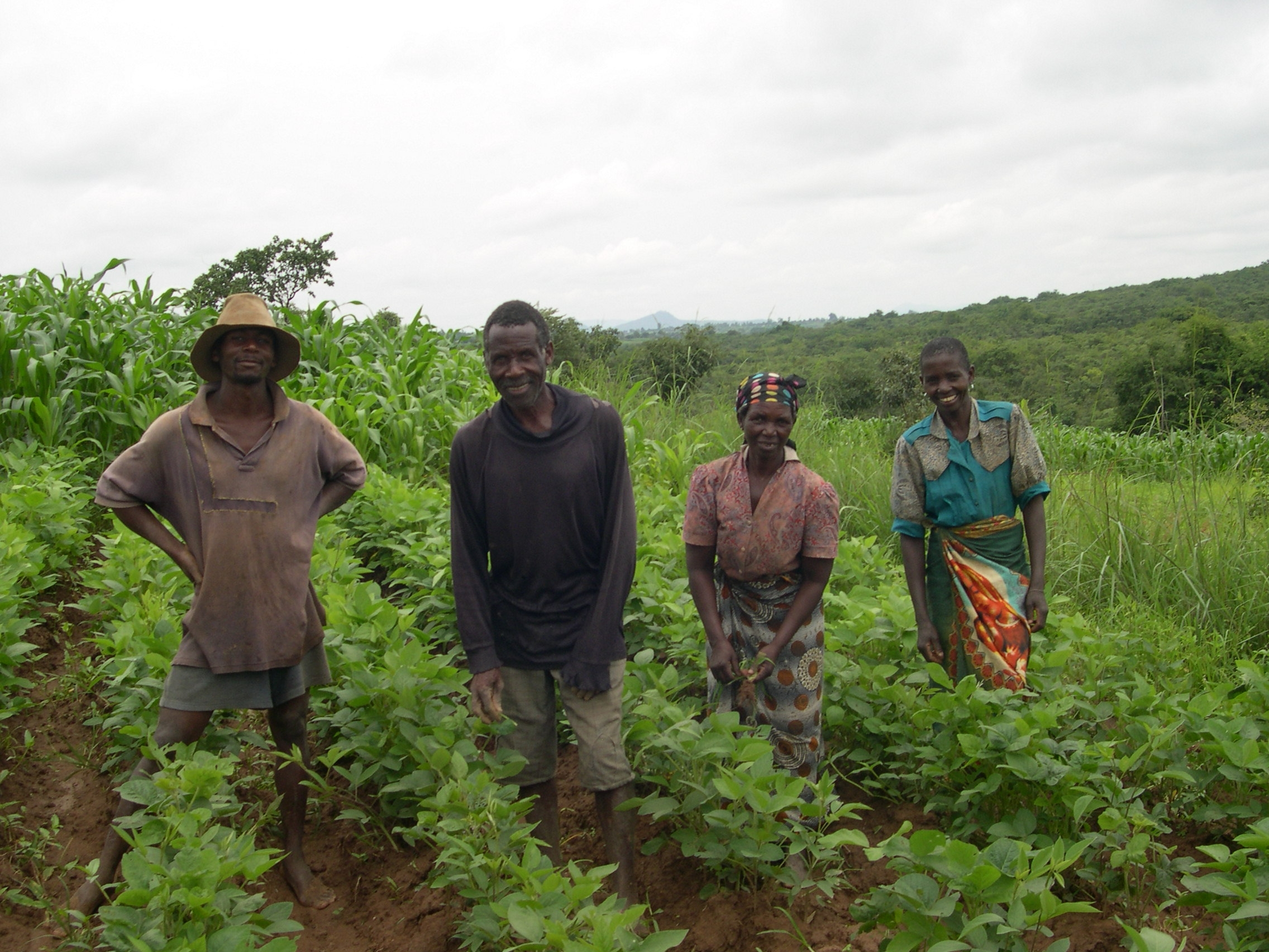 Soils Food and Health in Malawi