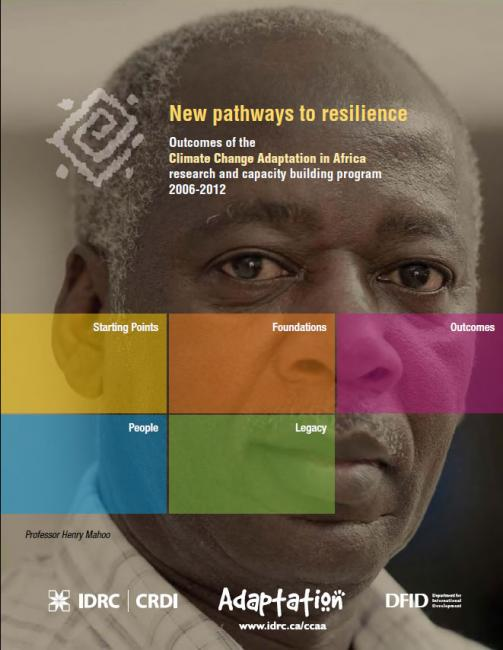 Report cover: New pathway to resilience